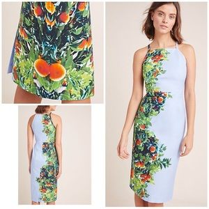 NWT Anthro Maeve Orange Bough Blossom Dress 00